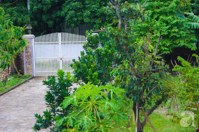 Ngôi nhà vườn xanh mát bóng cây của nữ giảng viên đại học chỉ cách Hà Nội 30 phút chạy xe - Ảnh 2.