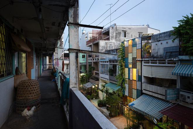 Ngôi nhà ống hơn 50 năm dầm mưa dãi nắng nay lột xác đẹp đến ngỡ ngàng ở quận 3, Sài Gòn - Ảnh 3.