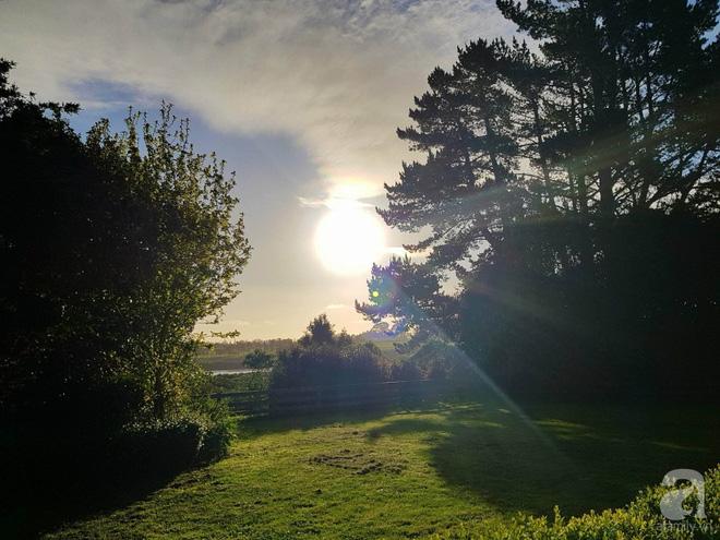 Choáng ngợp trước ngôi nhà vườn xanh mát bóng cây, rộng 7600m² của cô dâu Việt tại New Zealand - Ảnh 18.