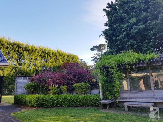 Choáng ngợp trước ngôi nhà vườn xanh mát bóng cây, rộng 7600m² của cô dâu Việt tại New Zealand - Ảnh 15.