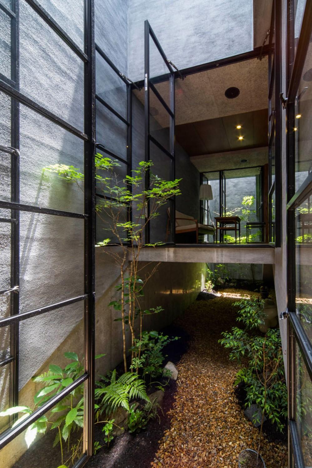 Căn nhà ống kín như bưng nhưng bên trong lại tràn ngập ánh sáng tự nhiên đến khó tin ở Nhật - Ảnh 7.