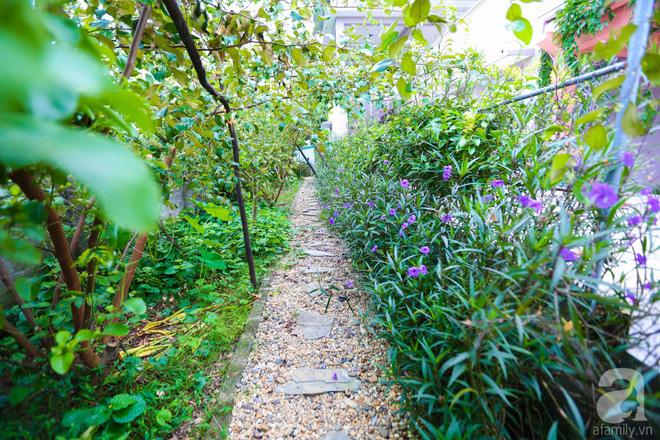 Ngôi nhà vườn xanh mát bóng cây của nữ giảng viên đại học chỉ cách Hà Nội 30 phút chạy xe - Ảnh 24.
