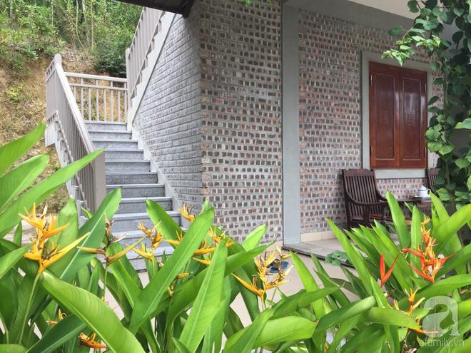 Ngôi nhà vườn hoài cổ với mái nhuốm màu thời gian bình yên giữa núi đồi Bắc Ninh - Ảnh 9.