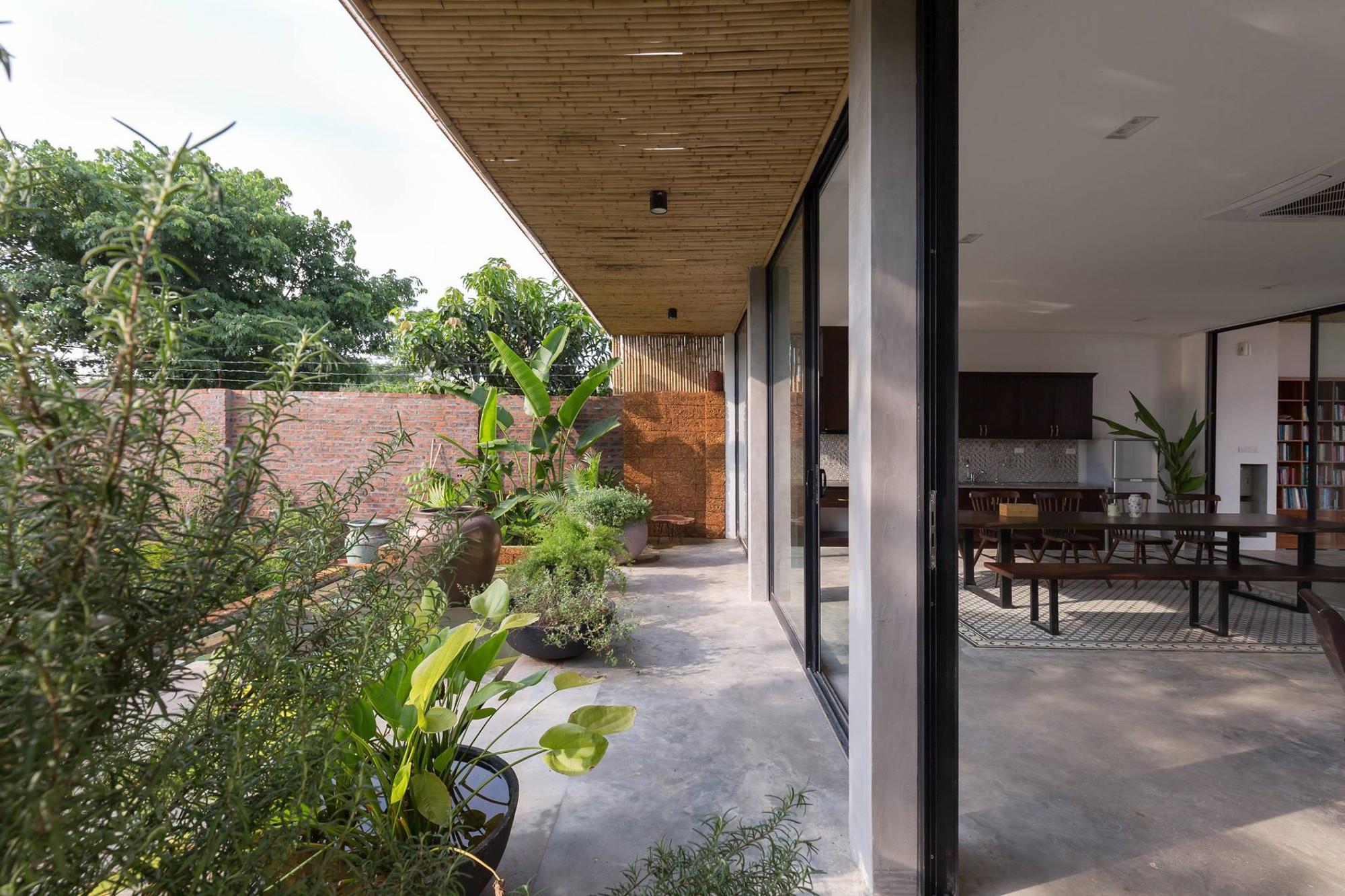 Ngôi nhà cấp 4 chan hòa ánh nắng và cây xanh mang lại vẻ yên bình đến khó tin ở Hà Nội - Ảnh 4.