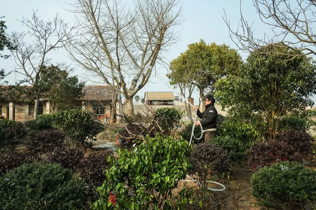 Ngôi nhà vườn rộng 4000m² đẹp bình yên được cải tạo từ mảnh đất toàn rác nhờ sự đồng lòng của hai vợ chồng bỏ phố về quê - Ảnh 7.
