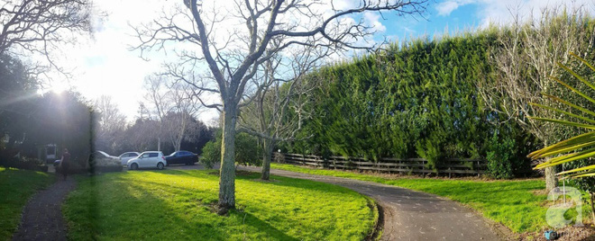 Choáng ngợp trước ngôi nhà vườn xanh mát bóng cây, rộng 7600m² của cô dâu Việt tại New Zealand - Ảnh 13.