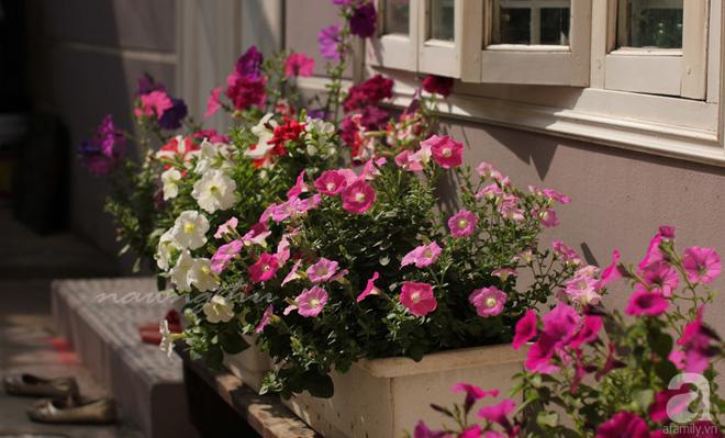 Ngôi nhà phố góc nào cũng xinh xắn và lãng mạn với hoa tươi của người phụ nữ Hà Thành - Ảnh 1.