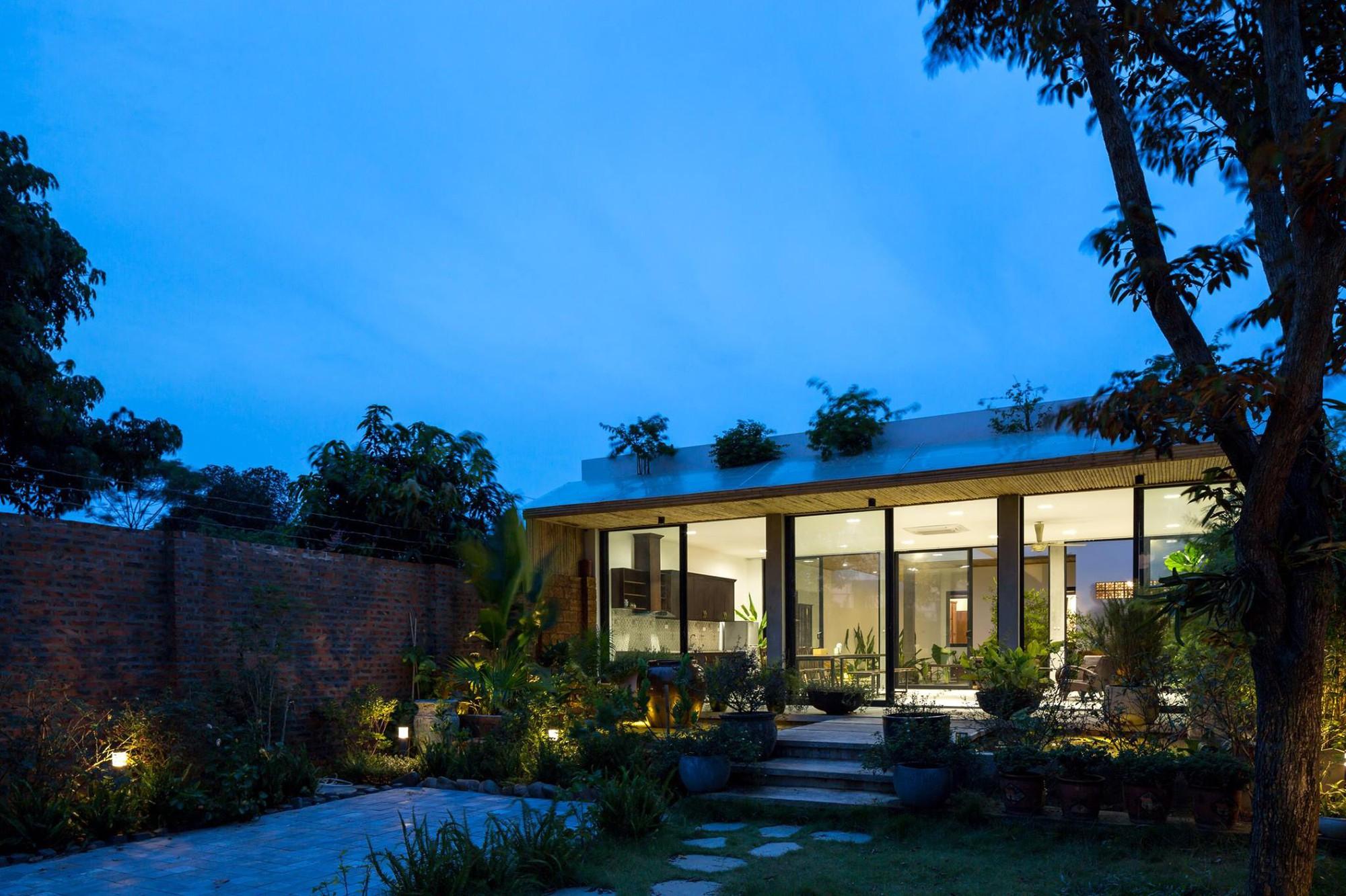Ngôi nhà cấp 4 chan hòa ánh nắng và cây xanh mang lại vẻ yên bình đến khó tin ở Hà Nội - Ảnh 1.