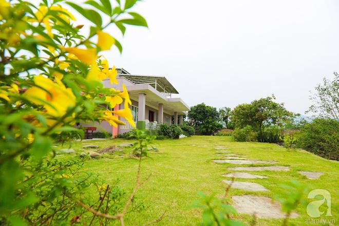 Ngôi nhà vườn xanh mát bóng cây của nữ giảng viên đại học chỉ cách Hà Nội 30 phút chạy xe - Ảnh 4.