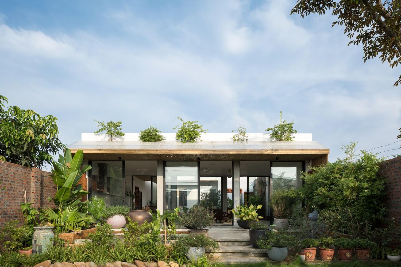 Ngôi nhà cấp 4 chan hòa ánh nắng và cây xanh mang lại vẻ yên bình đến khó tin ở Hà Nội - Ảnh 7.