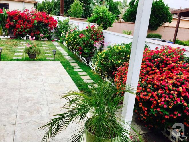 Nữ bác sỹ Việt tự tay cải tạo nhà cấp 4 rộng 600m² đầy cỏ hoang thành ngôi nhà vườn đáng mơ ước - Ảnh 22.