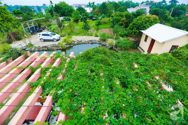 Ngôi nhà vườn xanh mát bóng cây của nữ giảng viên đại học chỉ cách Hà Nội 30 phút chạy xe - Ảnh 11.
